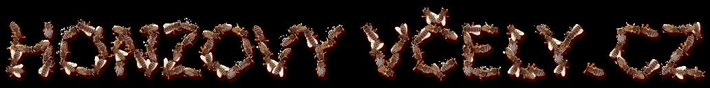Blog Honzových včel