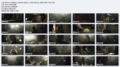 Raphael_Saadiq-Stone_Rollin-DVDRIP-x264-2011-FRAY