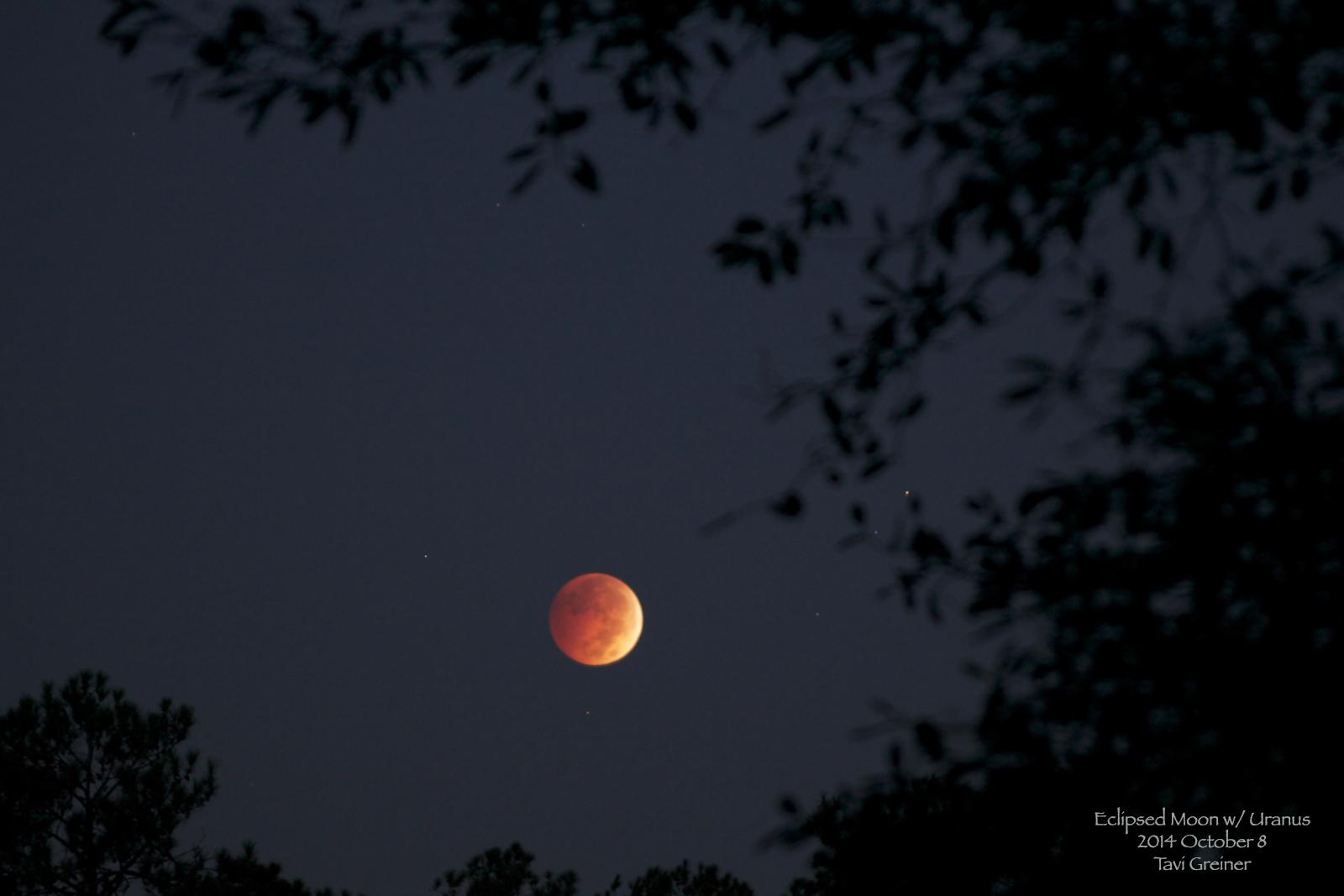Mặt Trăng chuyển màu đỏ trong chòm sao Pisces (hai con cá) cùng hành tinh Thiên Vương là chấm màu xanh nhỏ phía trên bên phải so với Mặt Trăng. Tác giả Tavi Greiner chụp ở Calabash, bắc California.