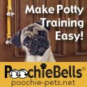 Our Beefy Pug Sponsor!