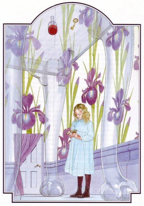 Alice S Illustrated Adventures In Wonderland