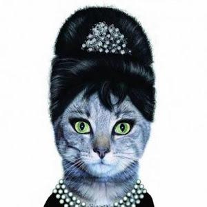 LADY CAT, LA MUJER DE MILORD CAT