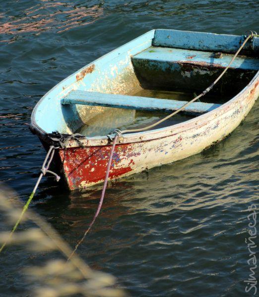 Barca en el estuario de Urdaibai - reserva de la biosfera
