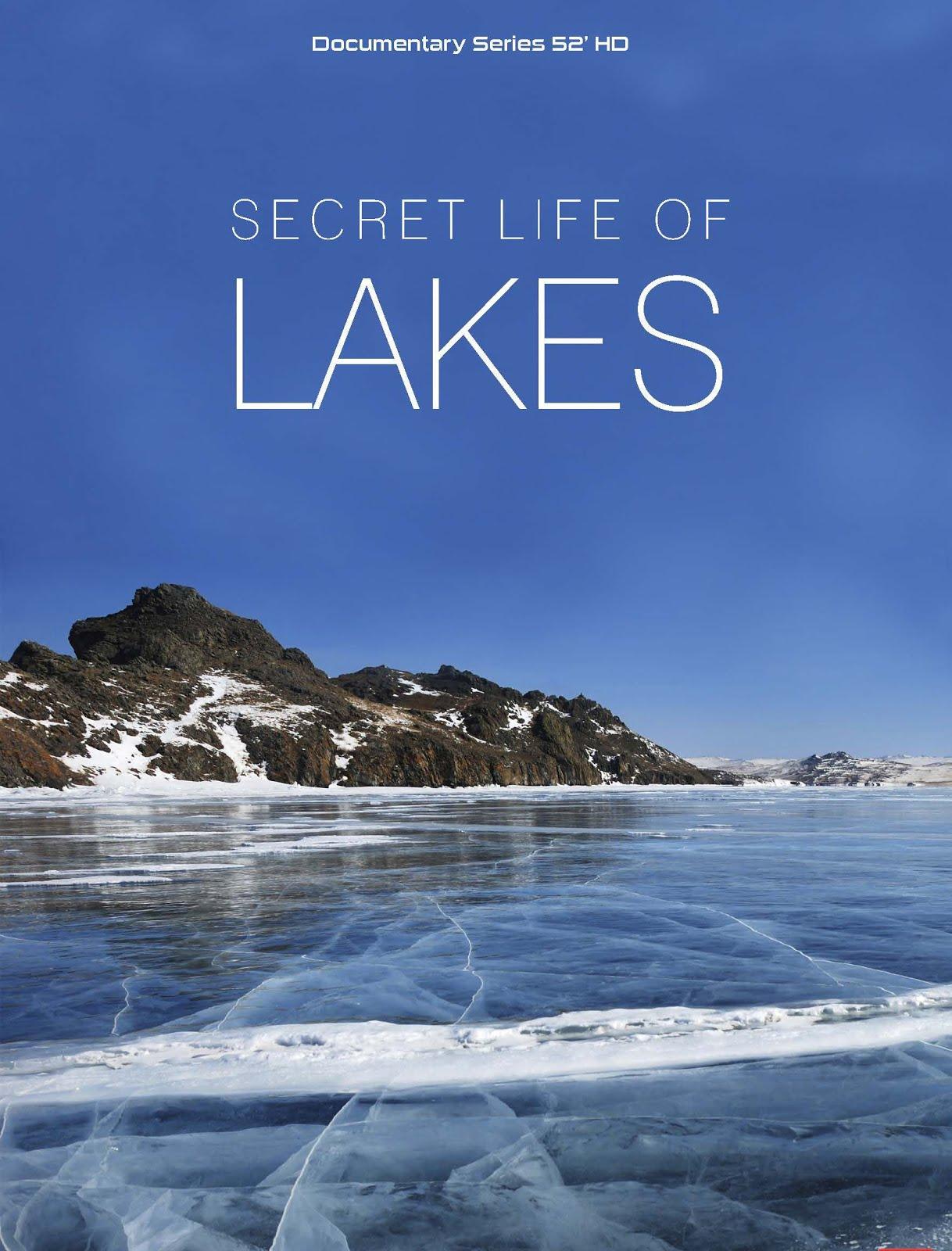 Göllerin Yaşamı