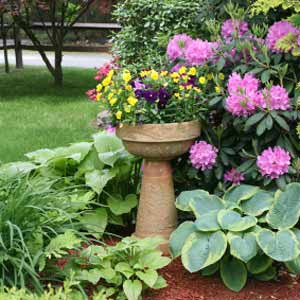 D i y d e s i g n curb appeal part 2 the landscaping for Low maintenance perennial flower bed