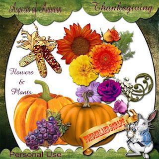 http://2.bp.blogspot.com/-WJMkA_538nQ/VkImhs2GXRI/AAAAAAAAGhg/NHWPihnUmGo/s320/ws_AOA_Thanksgiving_Flowers%2526Plants_pre.jpg