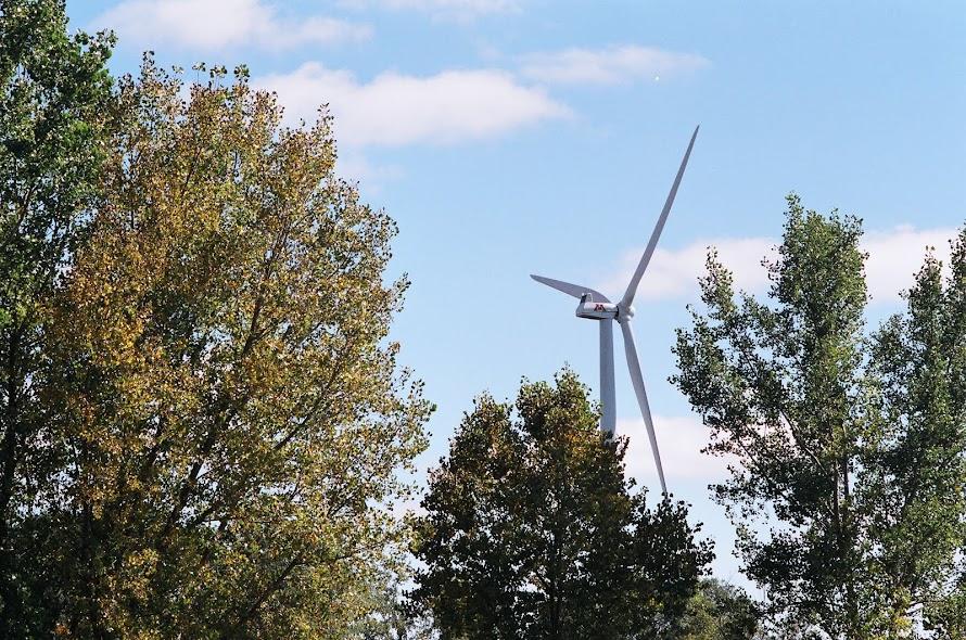 Wind turbine, seen through trees east of Morris MN