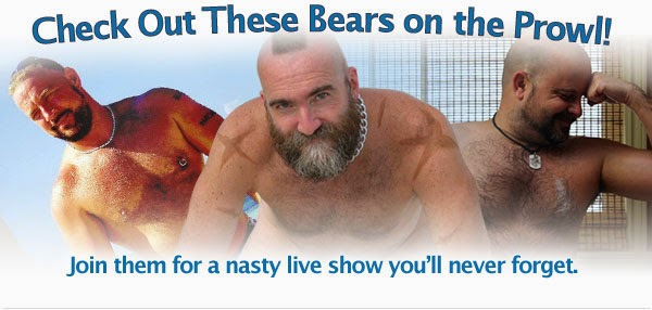 gay bear webcam chat
