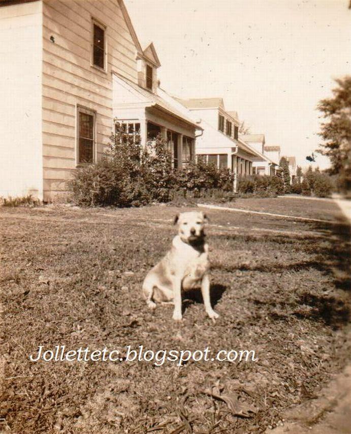 Dog on Farragut Street, Portsmouth, VA mid 1940s http://jollettetc.blogspot.com