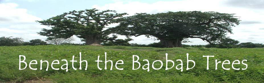 Beneath the Baobab Trees