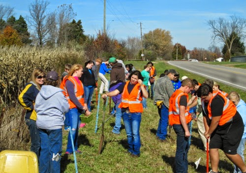 Students planting daffodils in Owensville, MO