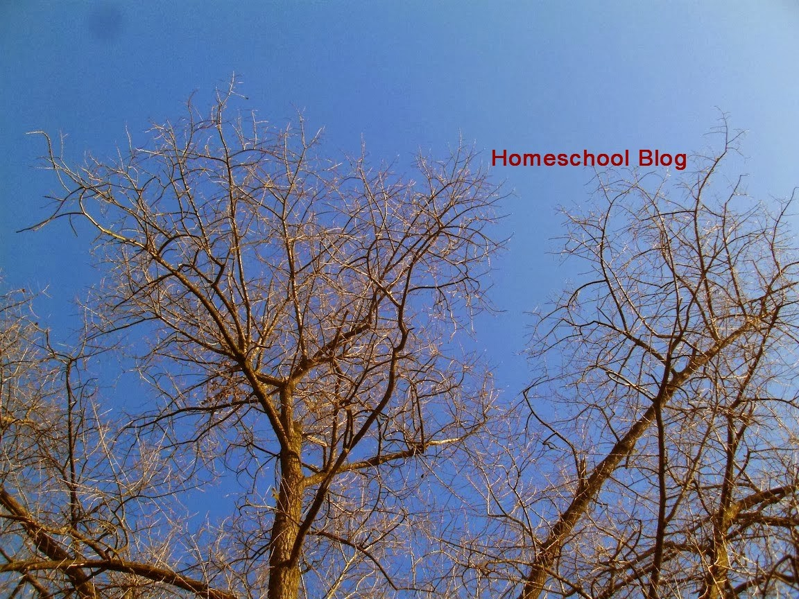 Herbst, Fall, Homeschool Blog, Jan und Bernice Zieba