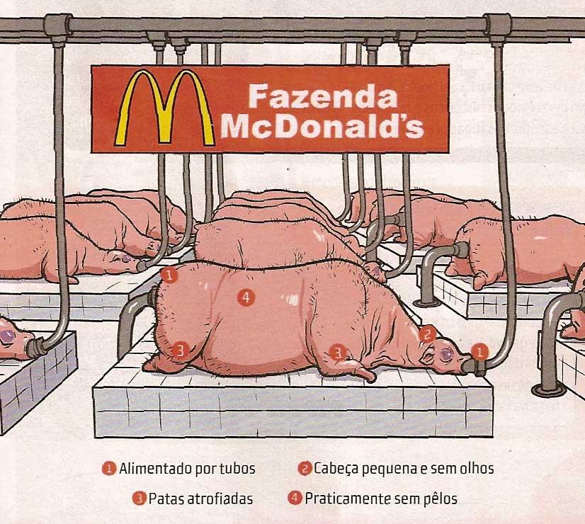 Con Que Estan Hechas Las Hamburguesas de McDonald