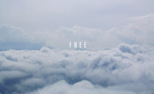 Freedom Air