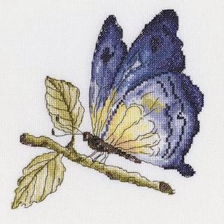RTO, Хрупкая красота в голубом