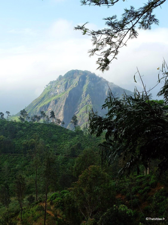 Small Adam's Peak montagne sommet pic d'Adam Sri-Lanka