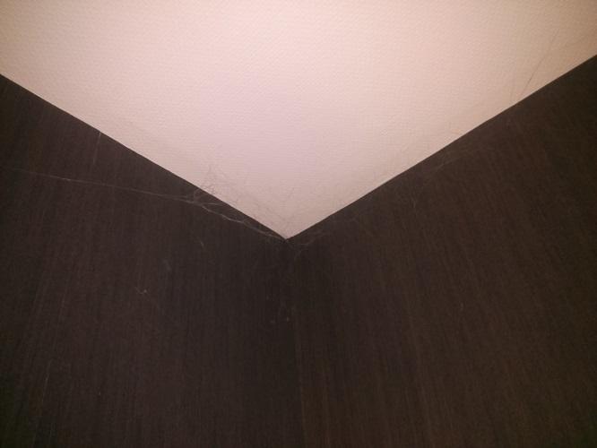 Telaraña de Spiderman en el Hotel Rive Gauche