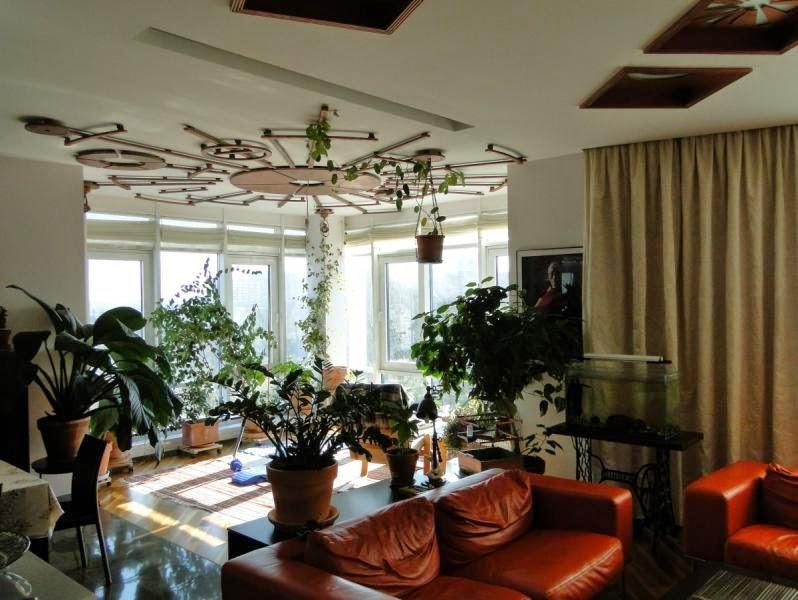 Ceiling design for the winter garden