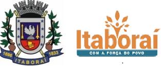 Prefeitura Municipal de Itaboraí