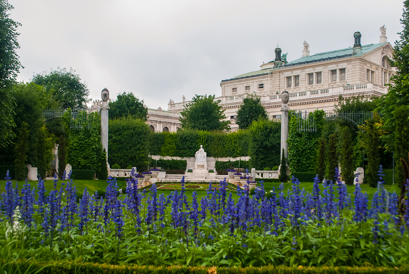Lavanders in the heldenplatz park in Vienna, Austria