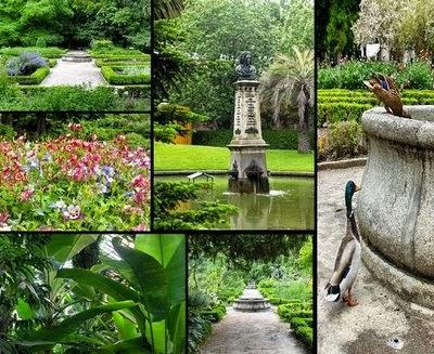 http://www.rjb.csic.es/jardinbotanico/jardin/index.php?Cab=5&SubCab=25&len=es