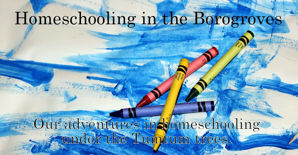 Homeschooling in the Borogroves
