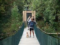 Joves caminants a dalt del pont penjant