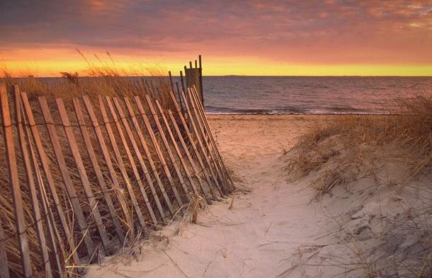 من أروع الشواطئ في العالم على خورة فقط ! capecod.jpg