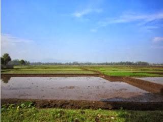 Kejari Tulungagung Usut Korupsi Tanah Bengkok Desa