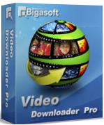 video downloader 2013 pc
