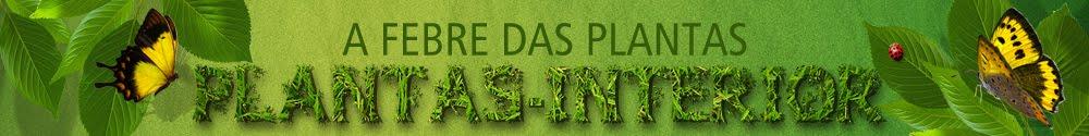 A Febre das Plantas - Plantas de Interior