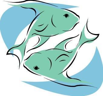 Klasifikasi Hewan Vertebrata (Pisces) Ikan