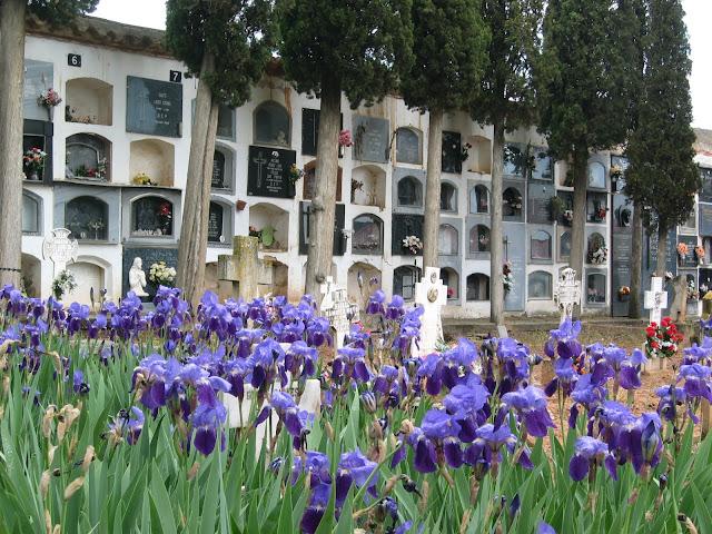 cementerio-municipal-torrebaja-españa