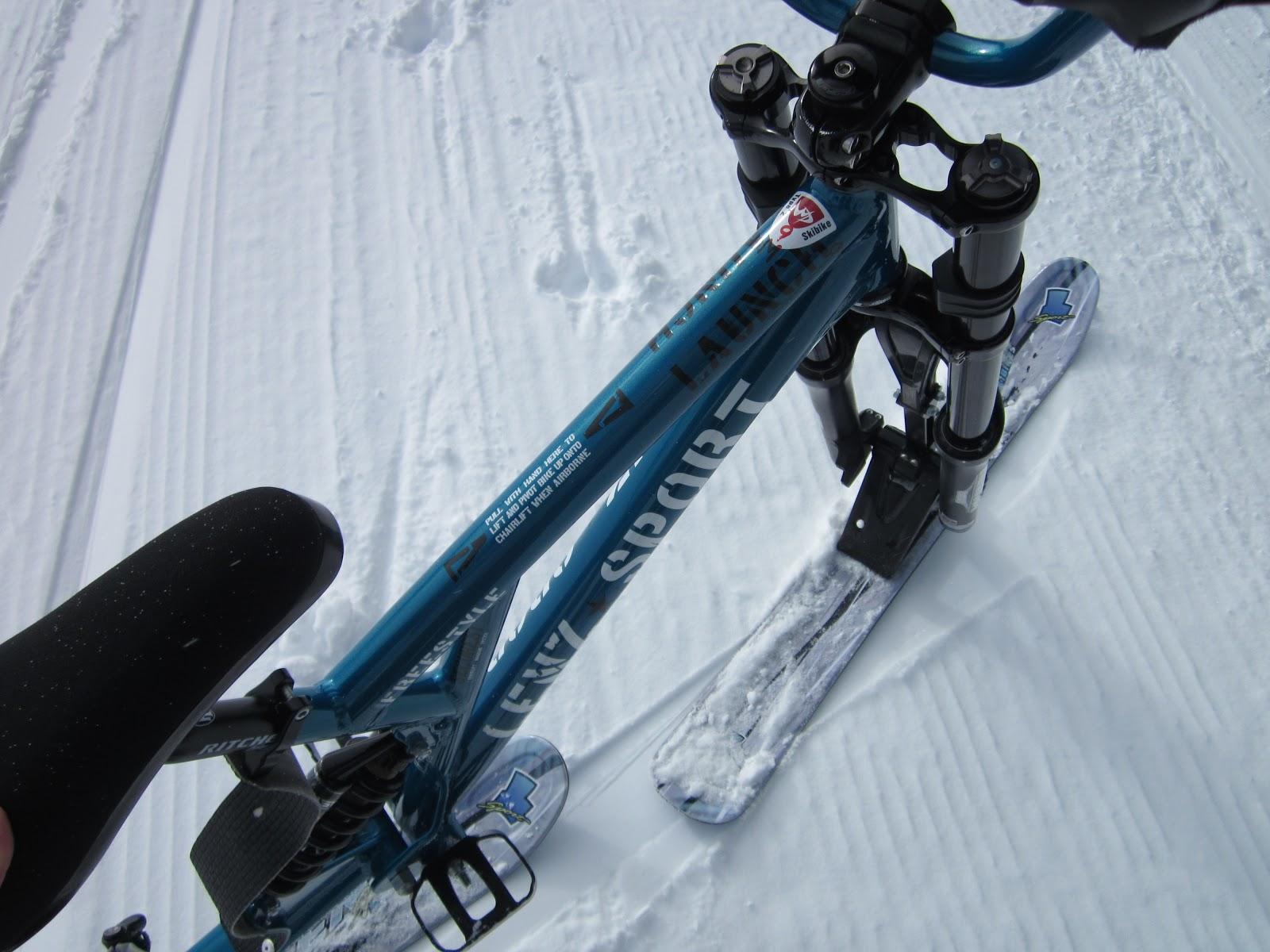 Professional Skibike Instruction