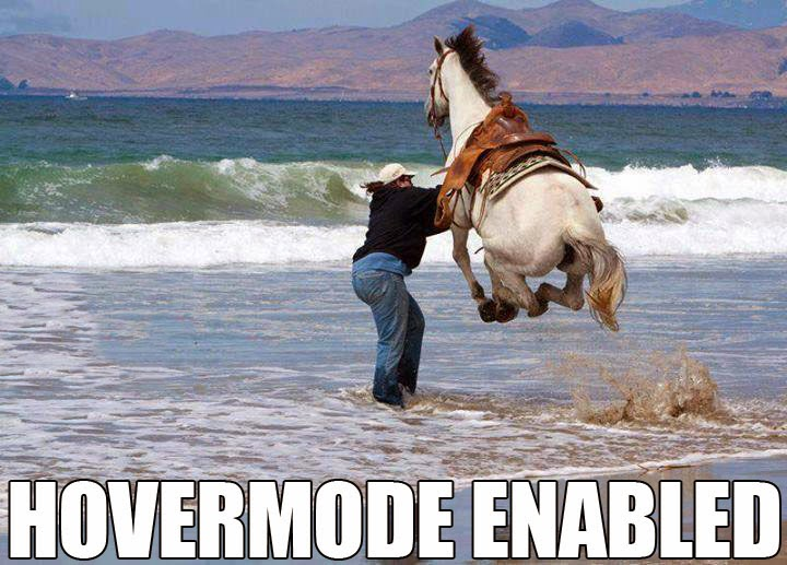 30 Funny animal captions - part 21 (30 pics), captioned animal pictures, hover horse