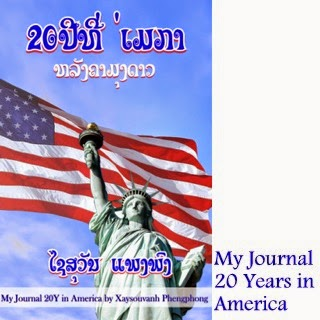 Journal: 20 Years in America