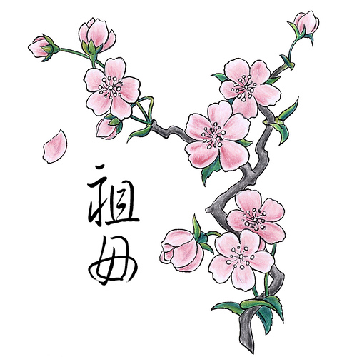 japanese cherry tree drawing. cherry blossoms!