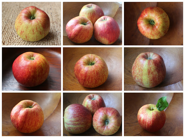 Collage of nine apple photographs