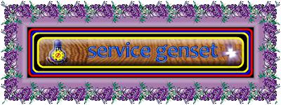 MELAYANI SERVICE MESIN DIESEL,GENERATOR,CONTROL GENSET