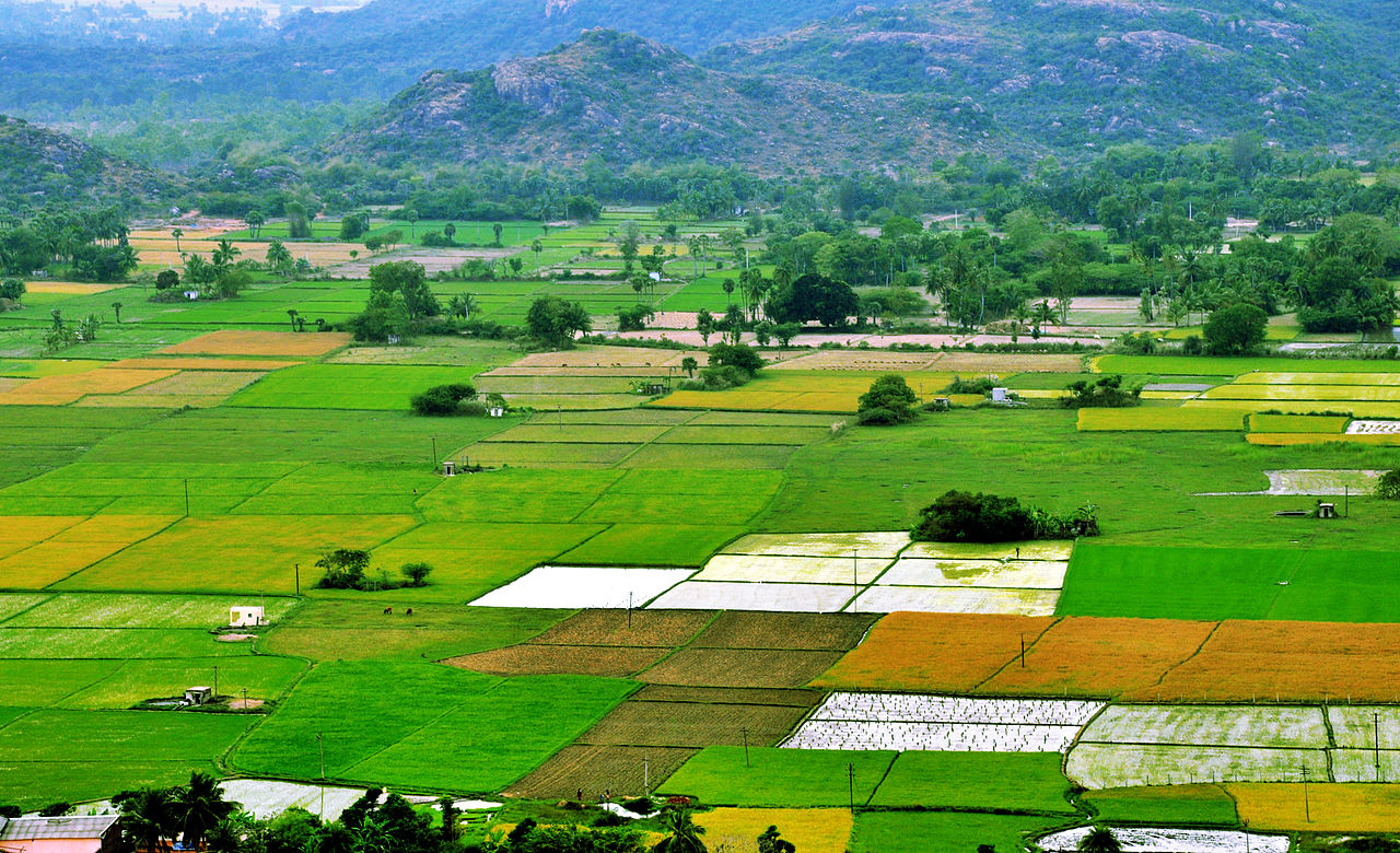 agriculture is the backbone of india Agriculture the backbone of the country agriculture department punjab pakistan loading unsubscribe from agriculture department punjab pakistan  claas india 841,571 views.