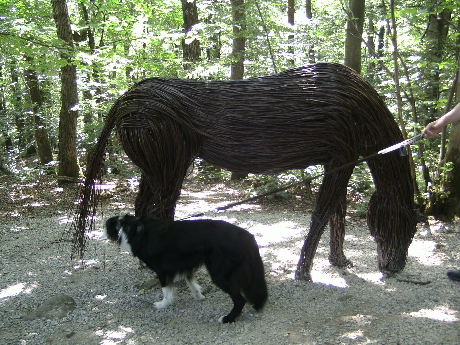 Burt finds a horse