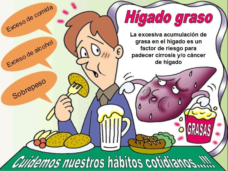 Gu a de enfermer a y medicina qu es el h gado graso for En k parte del cuerpo esta el higado