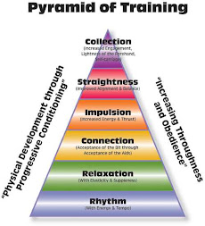 Classical Training Pyramid
