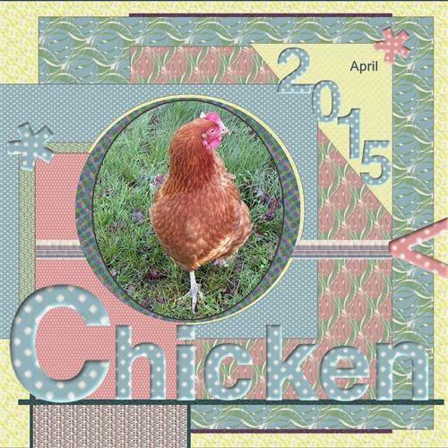 lo 5 - April 2015 - Chicken