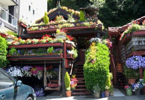 DreamznWishz House Of The Day Flower Power