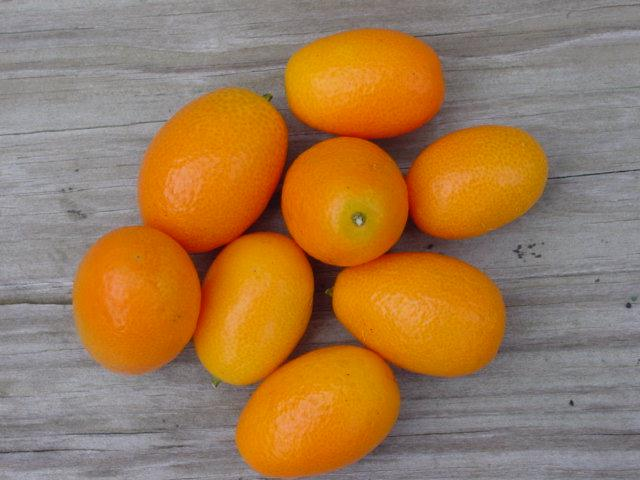kumquat fruit how to make a healthy fruit smoothie