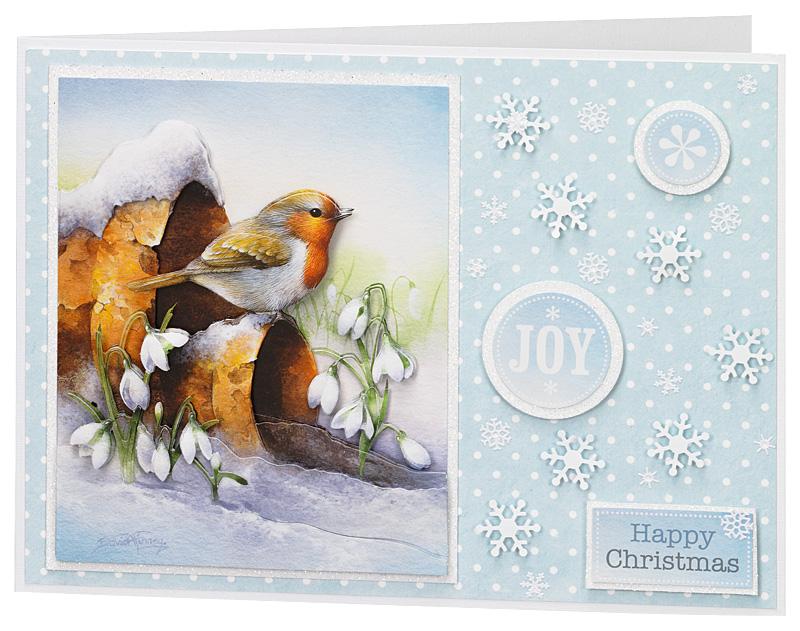 Christmas Card Gallery 2012