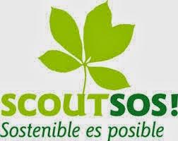 Manada de seeonee gesto scout a las en el grupo scout for Terrace 45 scout santiago