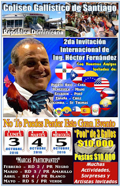 Gran Torneo el Proximo Lunes 3, Martes 4 y Miercoles 5 de Oct.en el Coliseo Gallistico de Santiago.