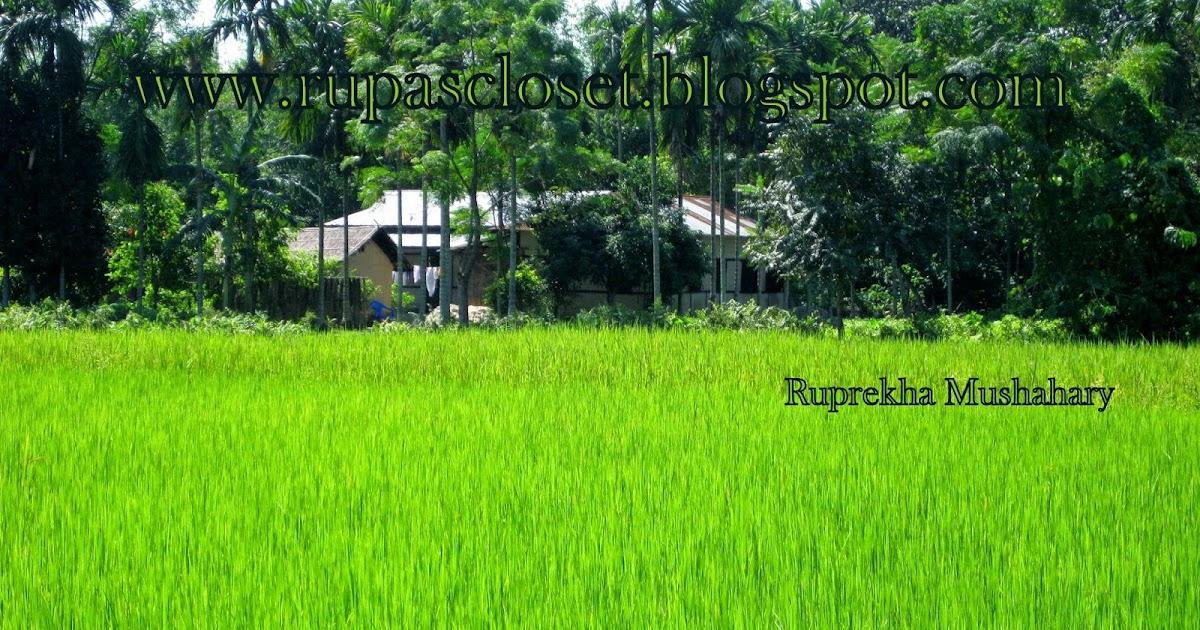 Feelings Memory Of A Joyful Visit To The Village